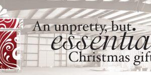 An unpretty, but. essential Christmas gift